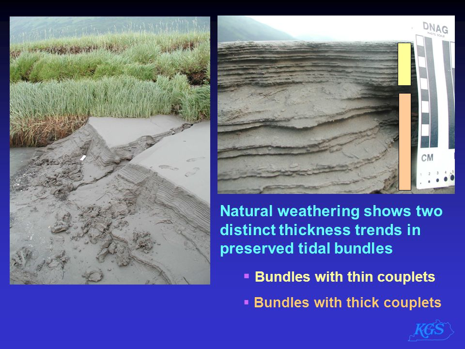 Bundles with thin couplets