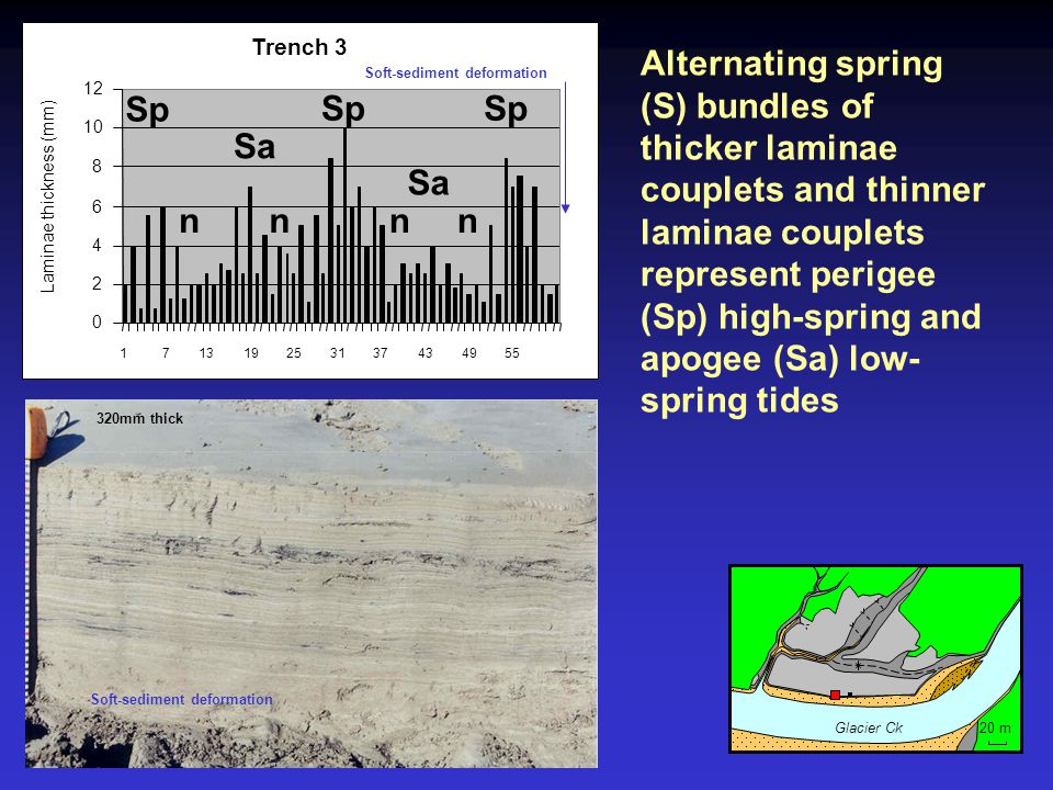 Laminae thickness (mm)