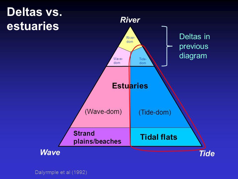 Deltas vs. estuaries River Deltas in previous diagram Estuaries