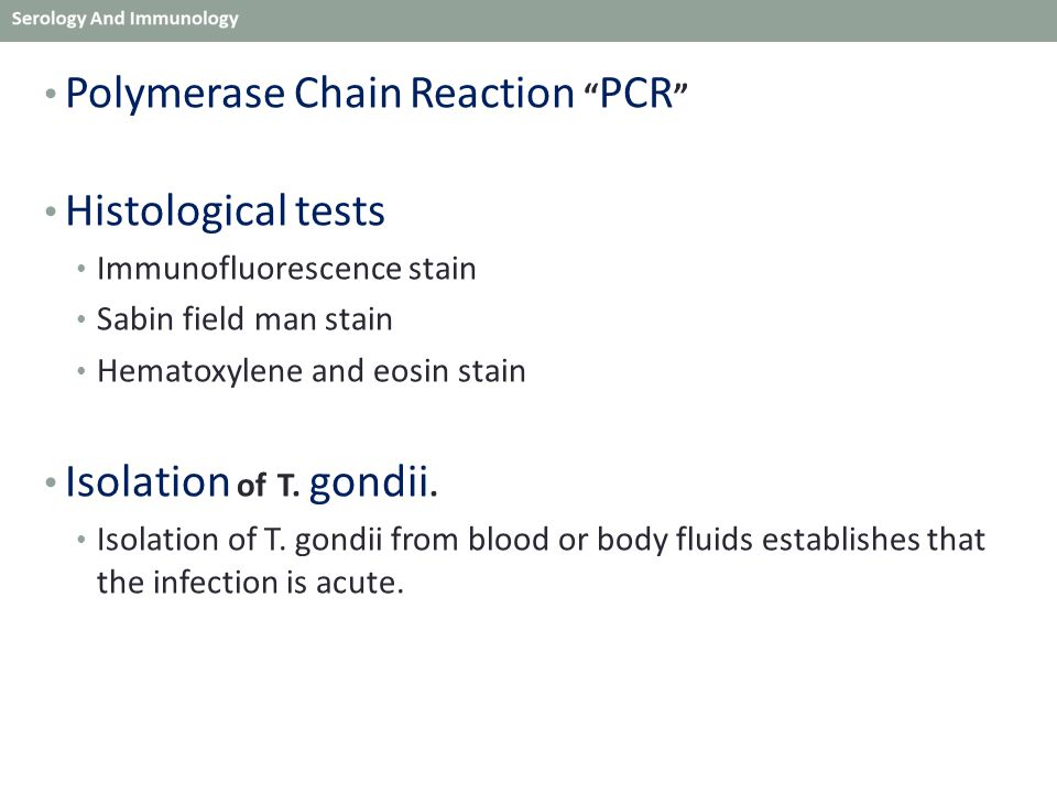Polymerase Chain Reaction PCR Histological tests