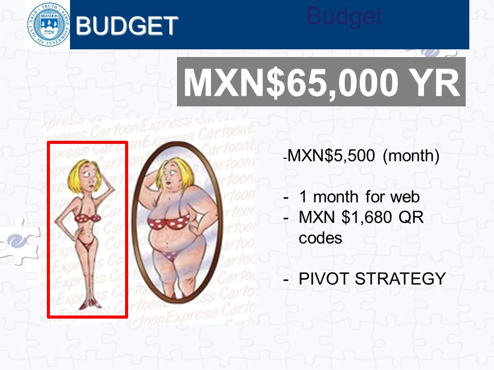 MXN$65,000 YR BUDGET Budget 1 month for web MXN $1,680 QR codes