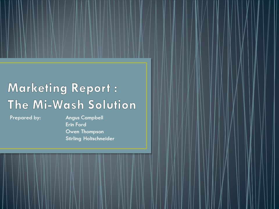 Marketing Report : The Mi-Wash Solution