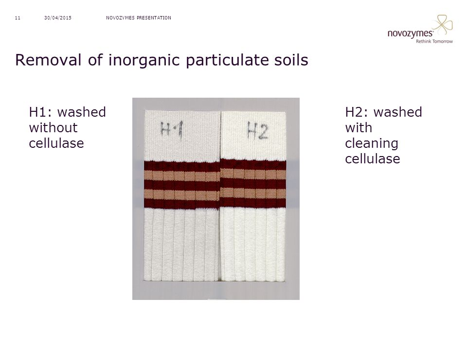 Removal of inorganic particulate soils