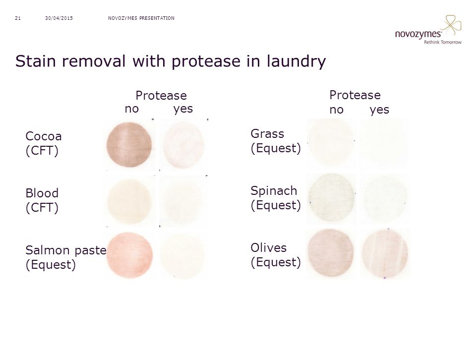 Stain removal with protease in laundry