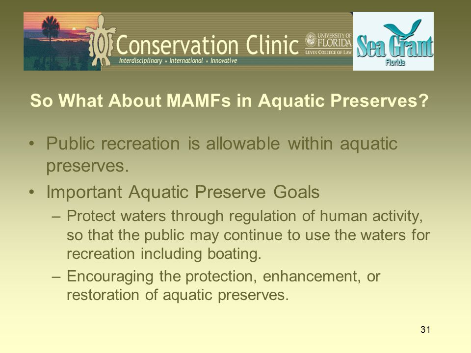 So What About MAMFs in Aquatic Preserves