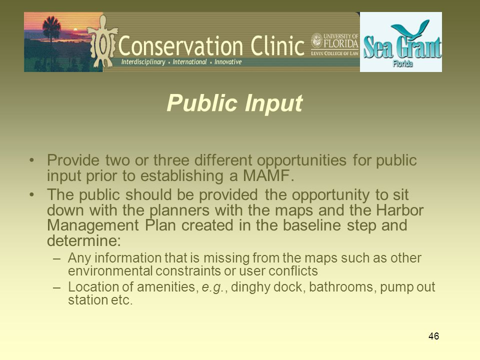 Public Input Provide two or three different opportunities for public input prior to establishing a MAMF.