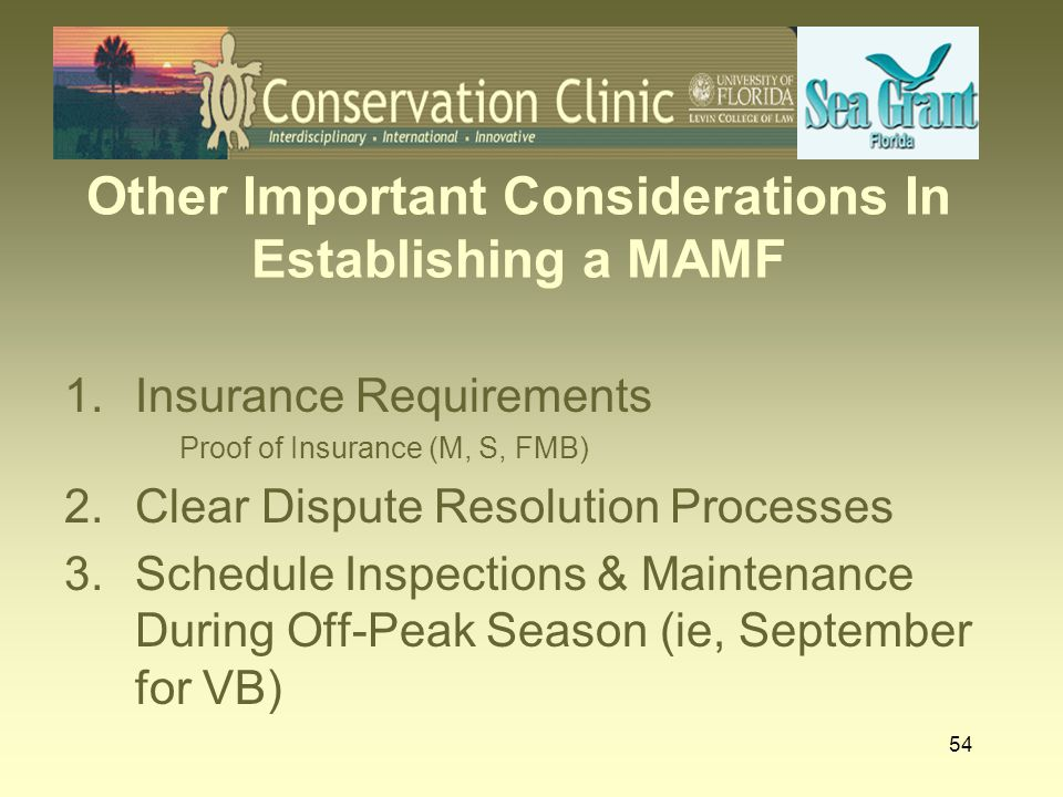 Other Important Considerations In Establishing a MAMF