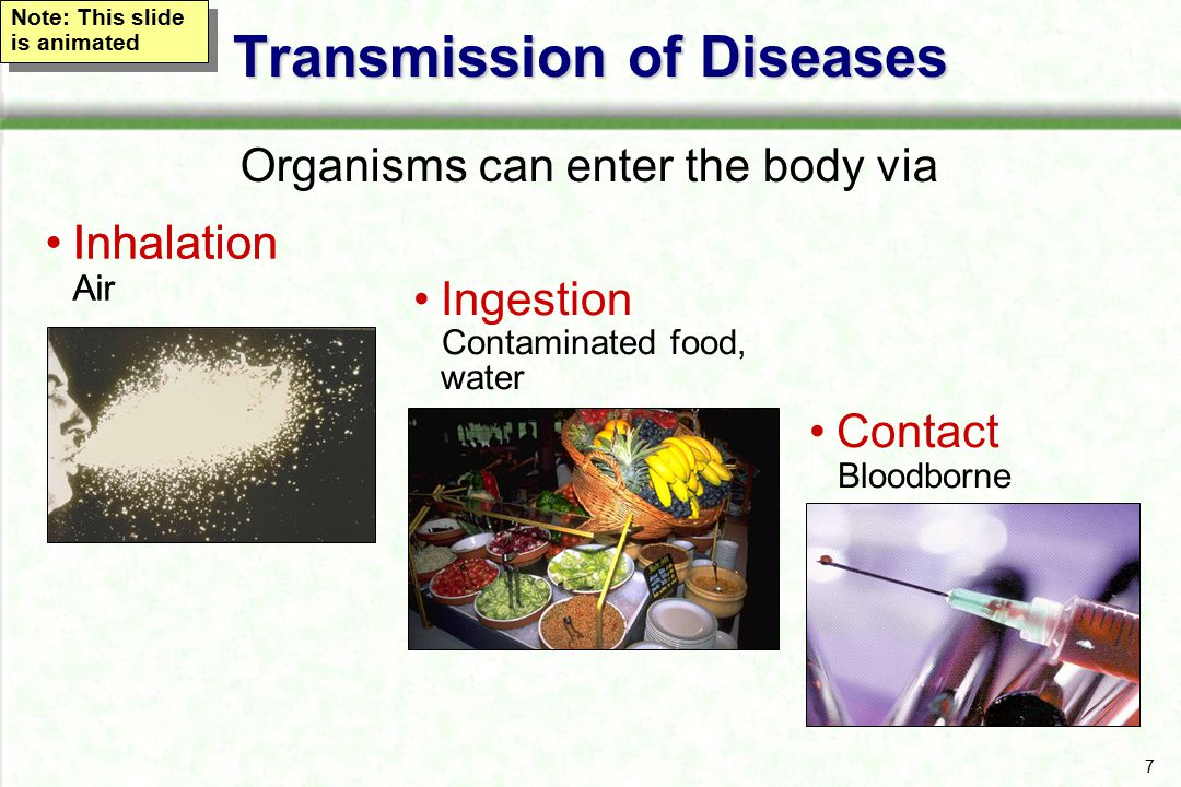 Transmission of Diseases