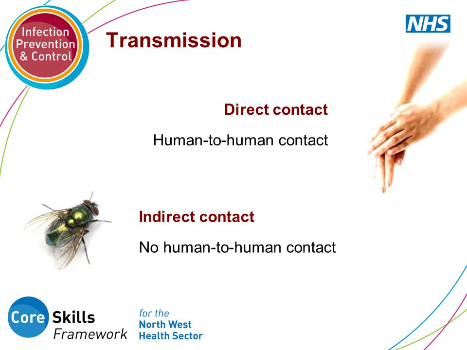 Transmission Direct contact Human-to-human contact Indirect contact