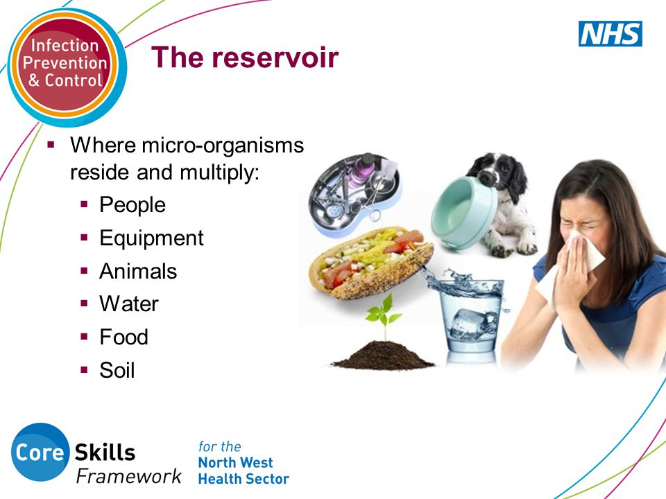The reservoir Where micro-organisms reside and multiply: People