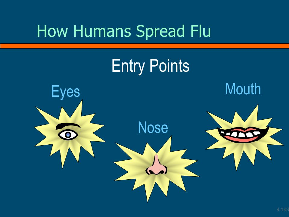 How Humans Spread Flu Entry Points Mouth Eyes Nose 4-143