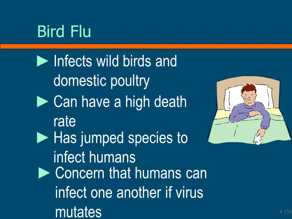 Infects wild birds and domestic poultry