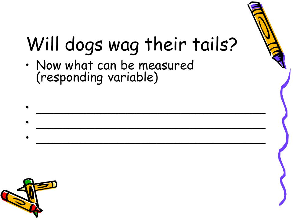Will dogs wag their tails