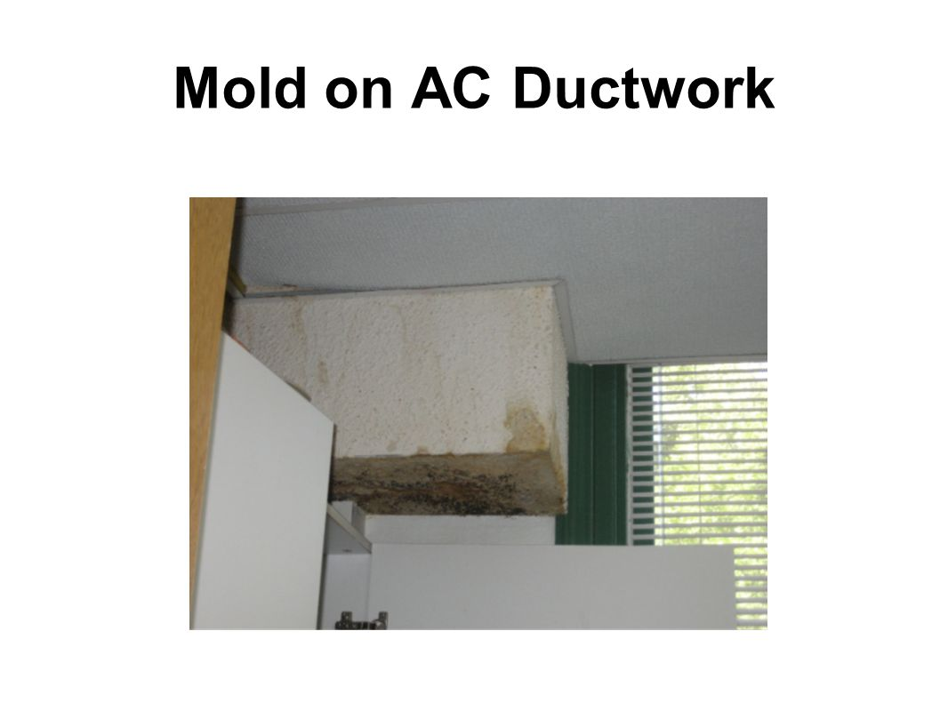 Mold on AC Ductwork