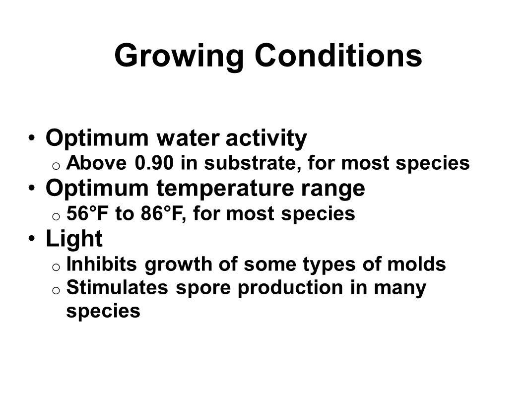 Growing Conditions Optimum water activity Optimum temperature range