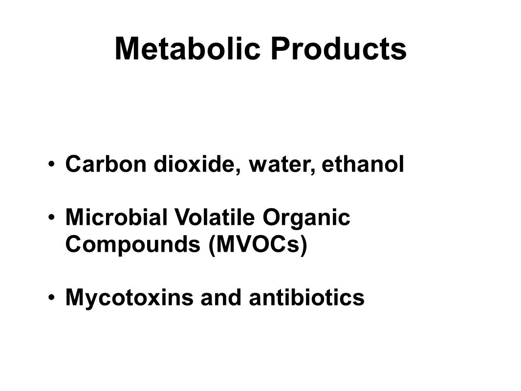 Metabolic Products Carbon dioxide, water, ethanol