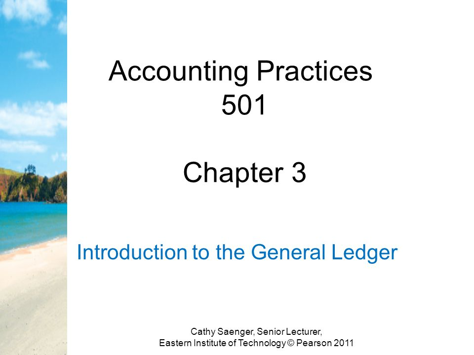 Accounting Practices 501 Chapter 3