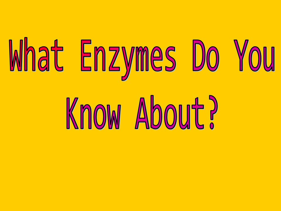 What Enzymes Do You Know About