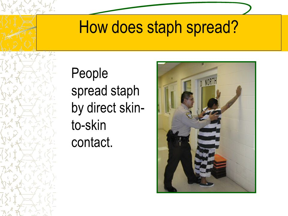 How does staph spread People spread staph by direct skin-to-skin contact.
