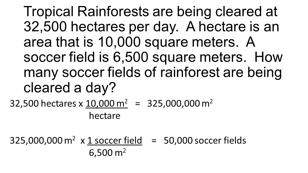 Tropical Rainforests are being cleared at 32,500 hectares per day