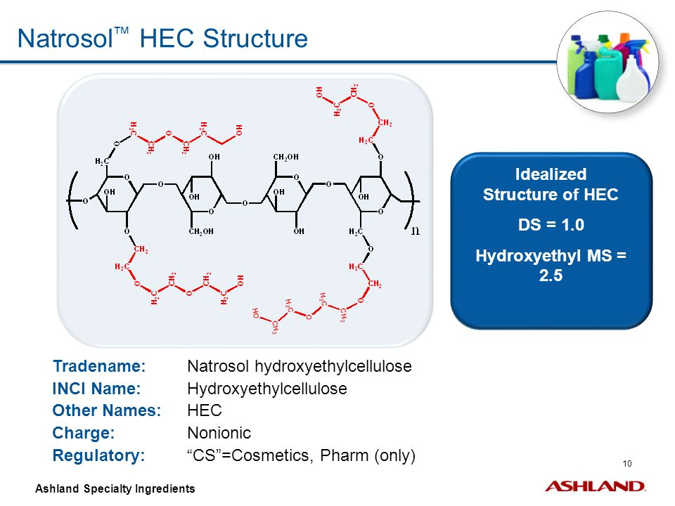 Idealized Structure of HEC