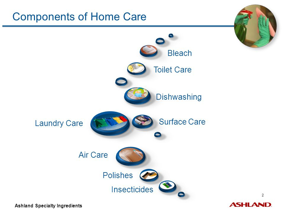 Components of Home Care