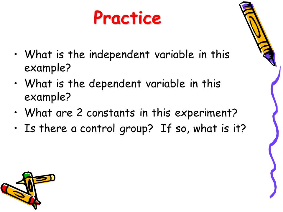 Variables, Constants, and Controls - ppt video online download