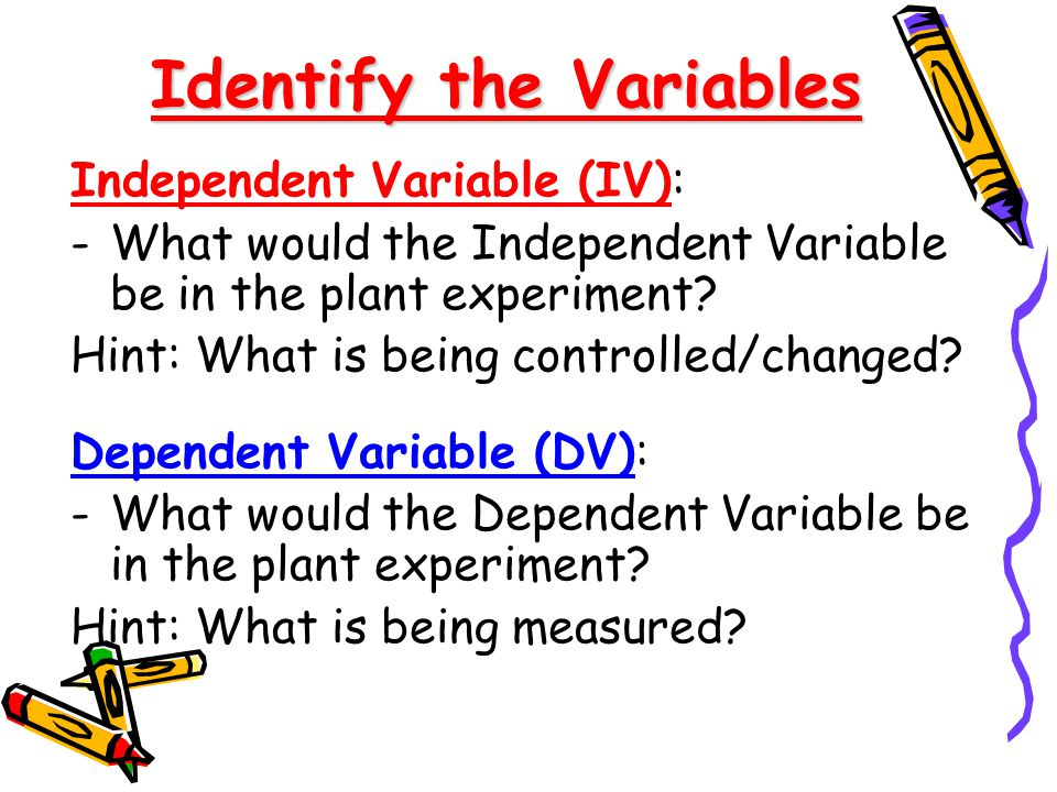 Identify the Variables