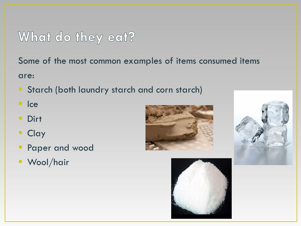 What do they eat Some of the most common examples of items consumed items. are: Starch (both laundry starch and corn starch)