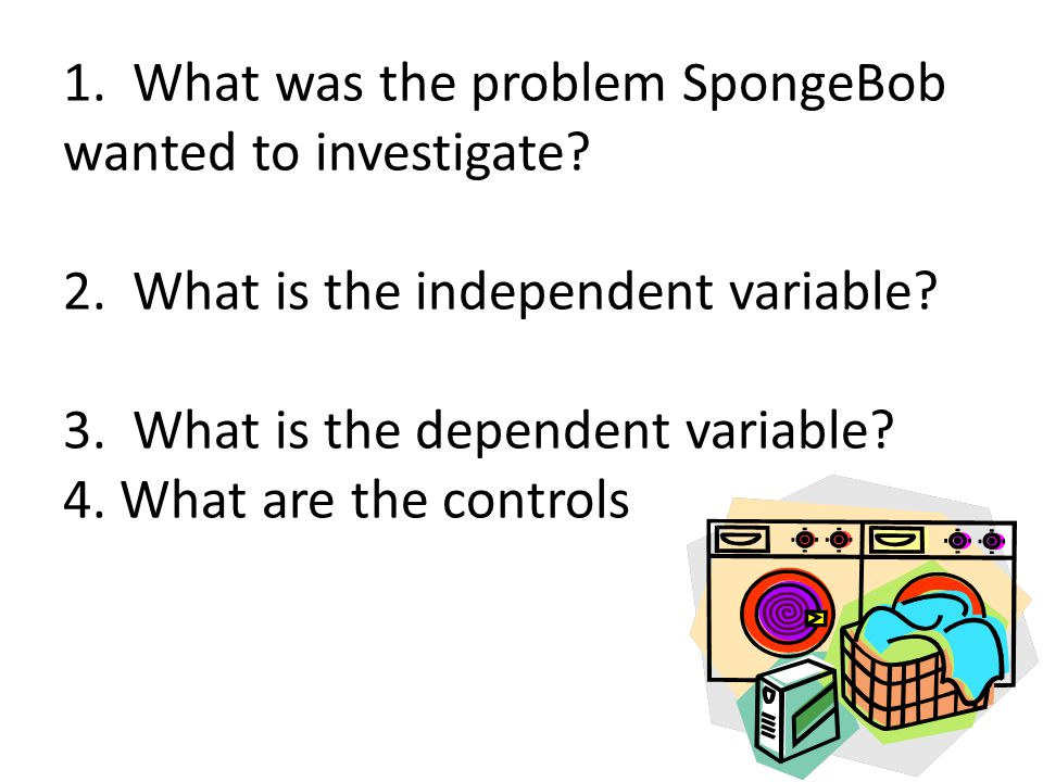 1. What was the problem SpongeBob wanted to investigate. 2