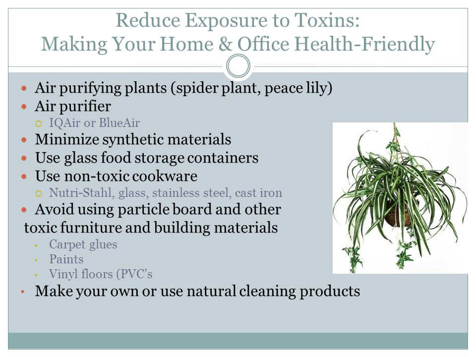 Reduce Exposure to Toxins: Making Your Home & Office Health-Friendly