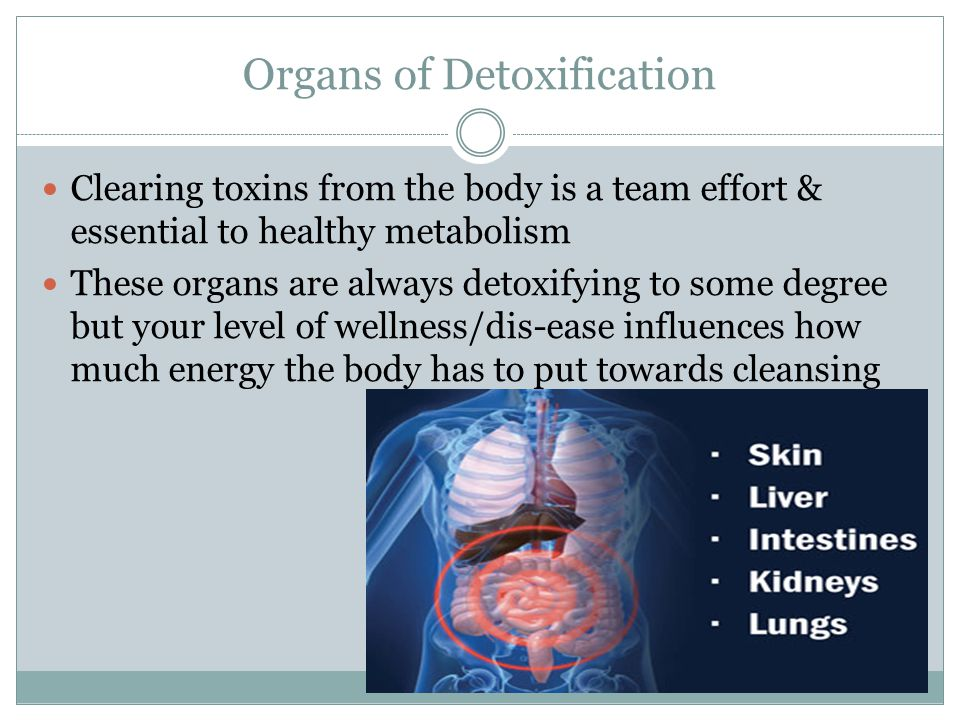 Organs of Detoxification
