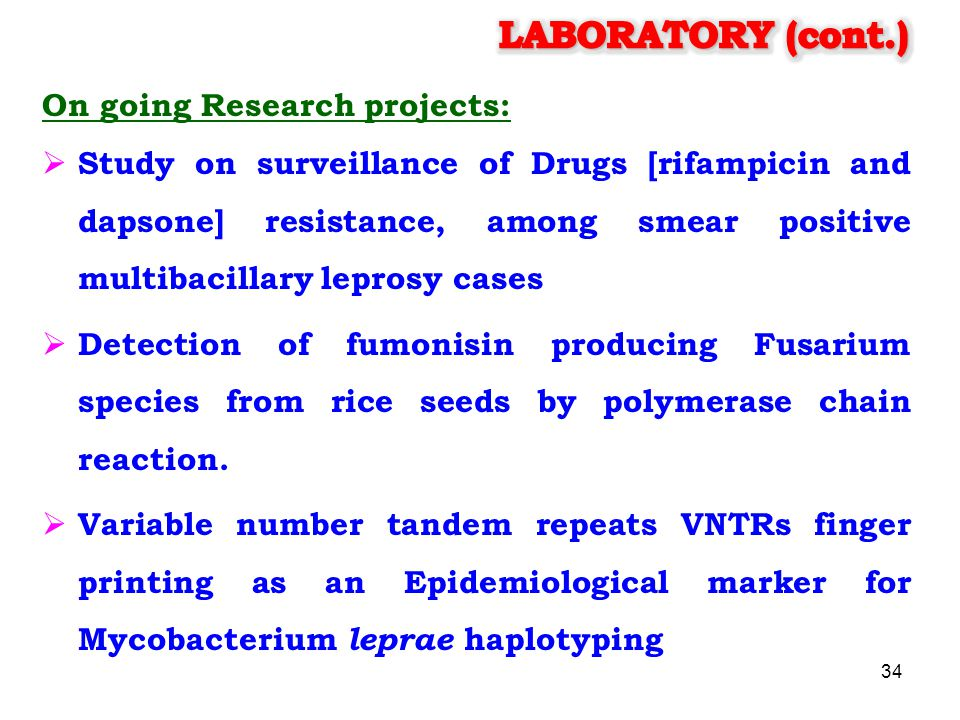 LABORATORY (cont.) On going Research projects:
