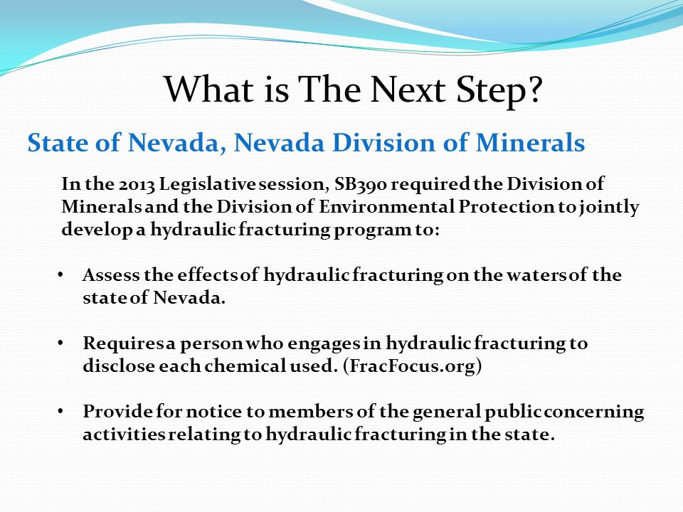 What is The Next Step State of Nevada, Nevada Division of Minerals