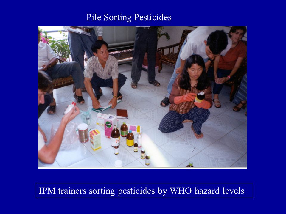 Pile Sorting Pesticides