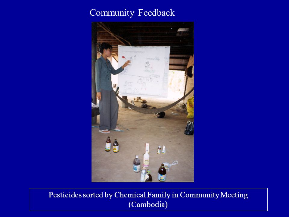 Pesticides sorted by Chemical Family in Community Meeting (Cambodia)