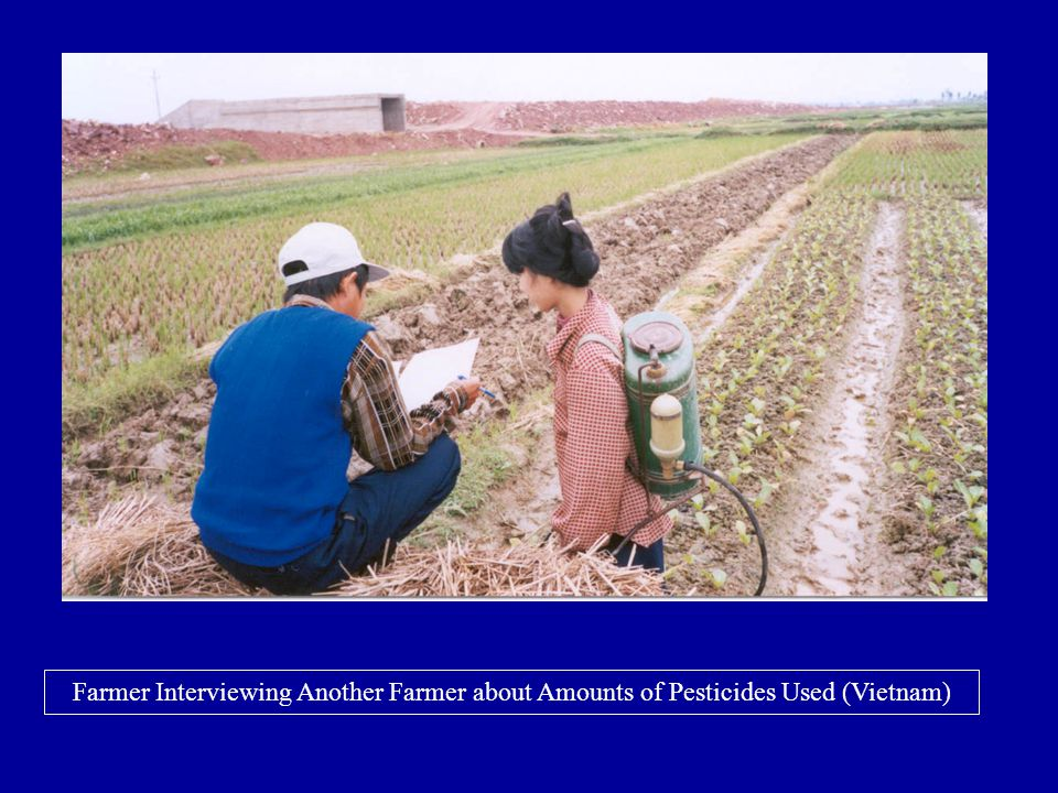 Farmer Interviewing Another Farmer about Amounts of Pesticides Used (Vietnam)