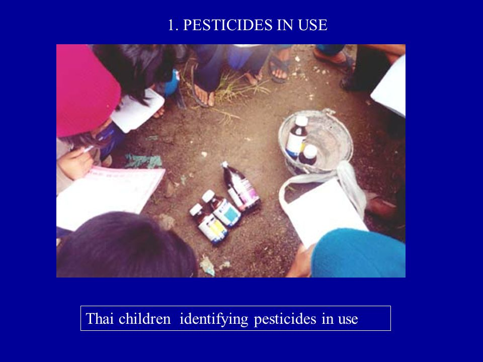 1. PESTICIDES IN USE Thai children identifying pesticides in use