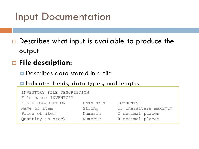 Input Documentation Describes what input is available to produce the output. File description: Describes data stored in a file.