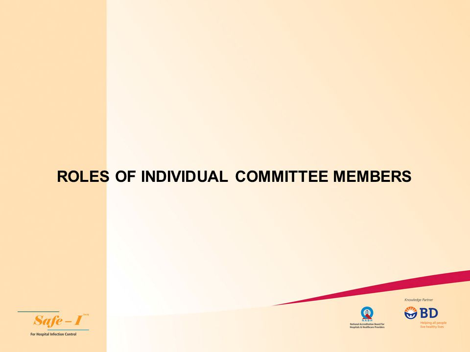 ROLES OF INDIVIDUAL COMMITTEE MEMBERS