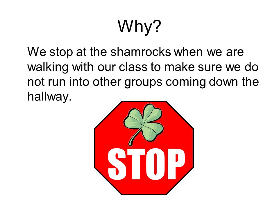 Why We stop at the shamrocks when we are walking with our class to make sure we do not run into other groups coming down the hallway.