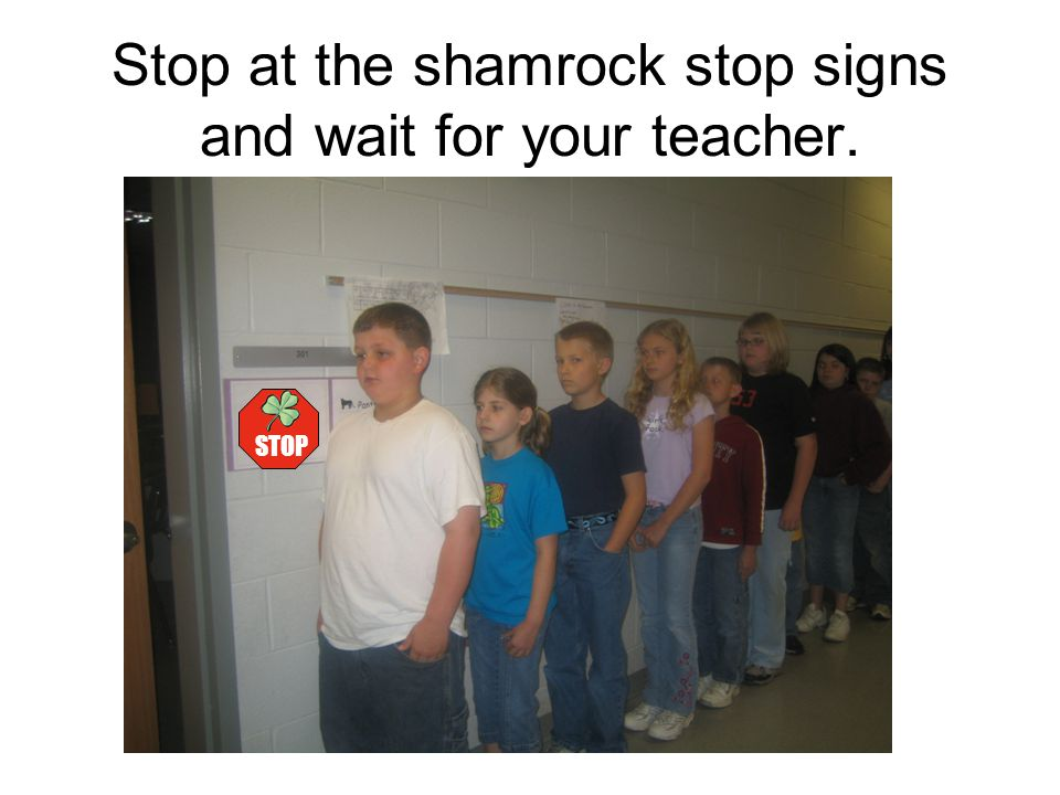Stop at the shamrock stop signs and wait for your teacher.