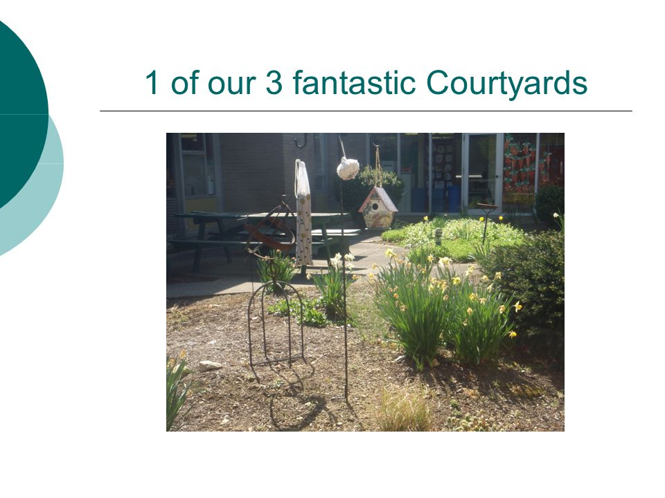 1 of our 3 fantastic Courtyards