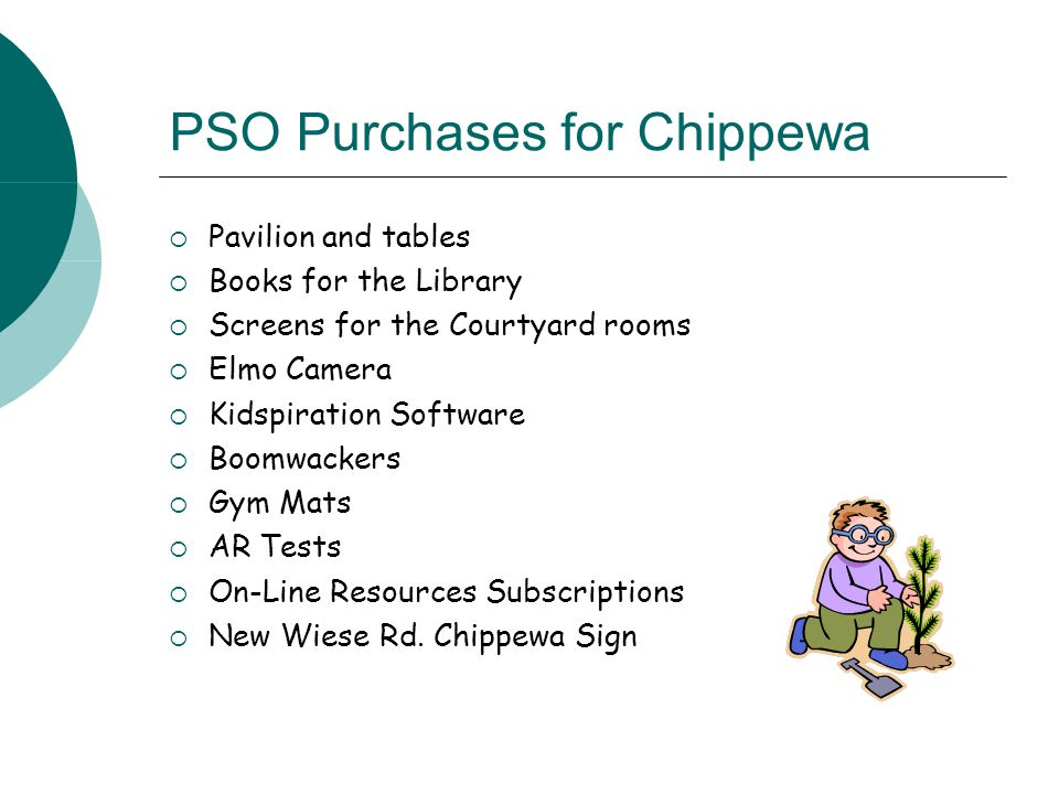 PSO Purchases for Chippewa