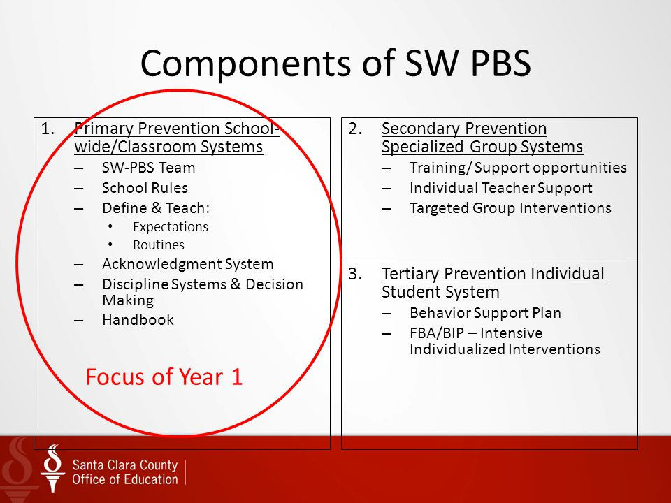 Components of SW PBS Focus of Year 1