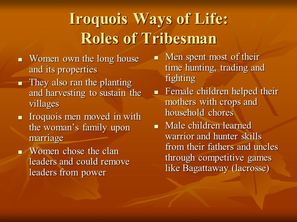 Iroquois Ways of Life: Roles of Tribesman