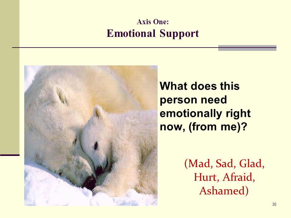 Axis One: Emotional Support