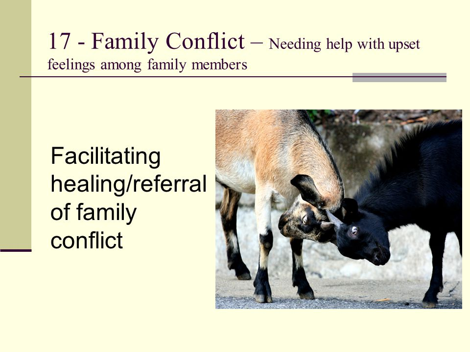17 - Family Conflict – Needing help with upset feelings among family members