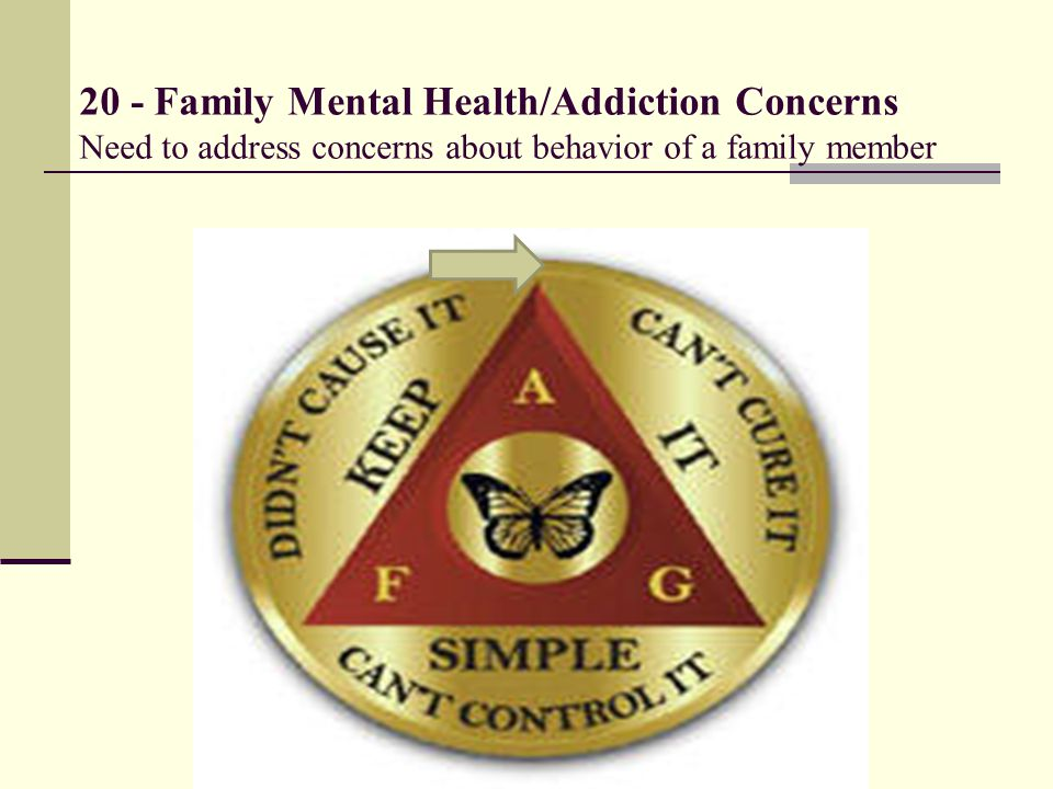 20 - Family Mental Health/Addiction Concerns Need to address concerns about behavior of a family member