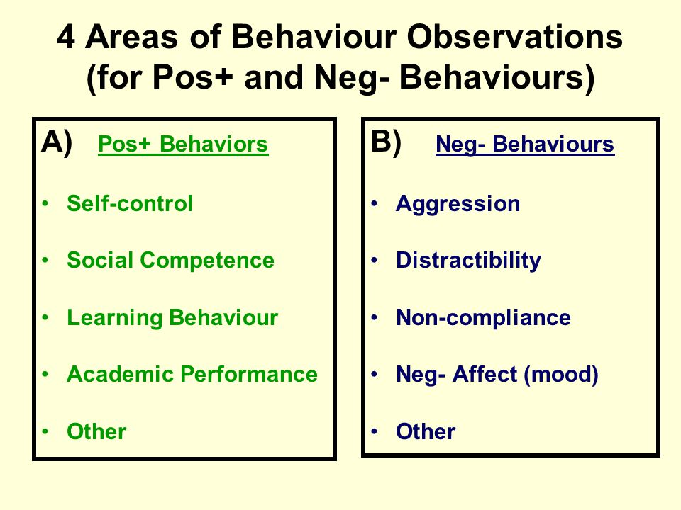 4 Areas of Behaviour Observations (for Pos+ and Neg- Behaviours)